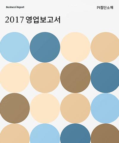 PI첨단소재 영업보고서(2017년).pdf