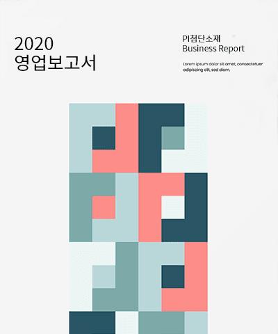 PI첨단소재 영업보고서(2020년).pdf